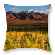 Autumn In Duke Creek Throw Pillow