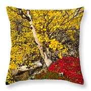 Autumn In Finland Throw Pillow