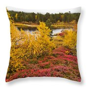 Autumn In Inari Throw Pillow