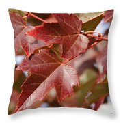 Autumn In My Back Yard Throw Pillow