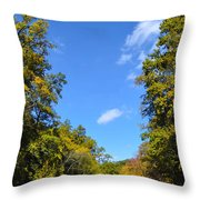 Autumn In Pennsylvania Throw Pillow