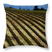 Autumn In Provence Throw Pillow