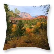Autumn In Red Rock Canyon Throw Pillow