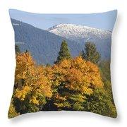 Autumn In The Illinois Valley Throw Pillow