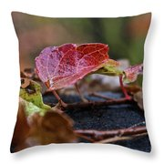 Autumn Ivy In Red Throw Pillow