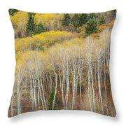 Autumn Layers Throw Pillow