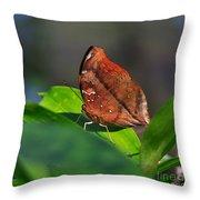 Autumn Leaf Butterfly Throw Pillow