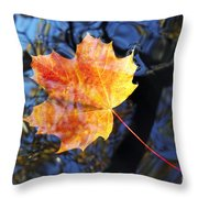 Autumn Leaf On The Water Level Throw Pillow