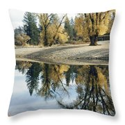 Autumn Leaves Growing Along A Gravel Throw Pillow