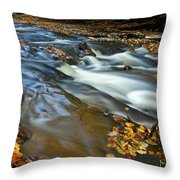 Autumn Leaves In Water II Throw Pillow