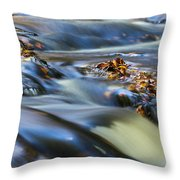 Autumn Leaves In Water IIi Throw Pillow