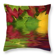 Autumn Leaves In Water With Reflection Throw Pillow