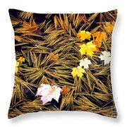 Autumn Leaves On Straw On Water Throw Pillow
