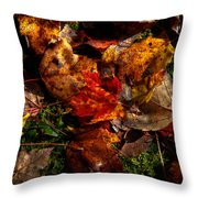 Autumn Leaves On The Moss Throw Pillow