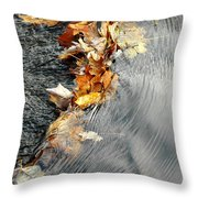 Autumn Leaves Tiny Dam Throw Pillow
