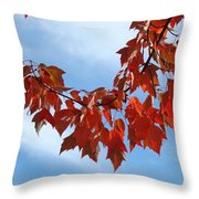 Autumn Leaves Tree Red Orange Art Prints Blue Sky White Clouds Throw Pillow