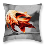Autumn Leftovers II Throw Pillow