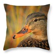 Autumn Mallard Throw Pillow
