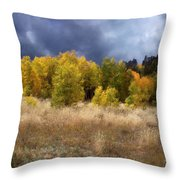 Autumn Meadow Throw Pillow by Carol Cavalaris