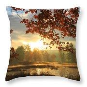 Autumn Morning At Harvard Pond Throw Pillow