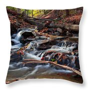 Autumn Moving Water With Foliage Throw Pillow