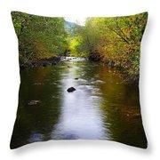 Autumn On Satus Creek  Throw Pillow