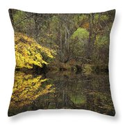 Autumn On The Pond Throw Pillow