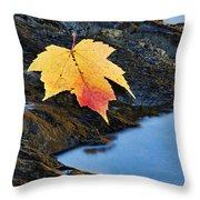 Autumn On The Tellico River - D004558 Throw Pillow
