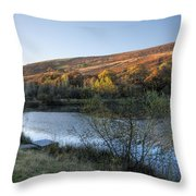Autumn Pond 3 Throw Pillow