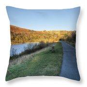 Autumn Pond 5 Throw Pillow