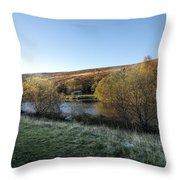 Autumn Pond 7 Throw Pillow