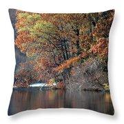 Autumn Pond Reflections Throw Pillow