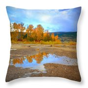 Autumn Puddles Throw Pillow
