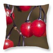 Autumn Red Berry Sparkle Throw Pillow