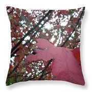 Autumn Red Maple Tree Throw Pillow
