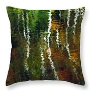 Autumn Reflections 1 Throw Pillow