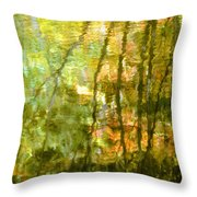 Autumn Reflections New Hampshire Throw Pillow