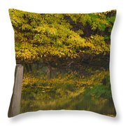 Autumn Reflections_0138 Throw Pillow