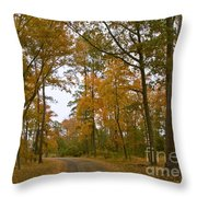 Autumn Road Colors Throw Pillow