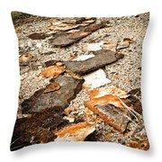 Autumn Rusted Throw Pillow