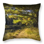 Autumn Scene Of The Little Manistee River In Michigan No. 0882 Throw Pillow
