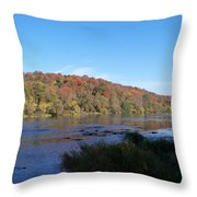 Autumn Scenery Along The Grand River Throw Pillow
