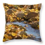 Autumn Slipping Away 0437 Throw Pillow