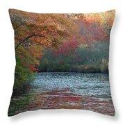 Autumn Splendor 1 Throw Pillow