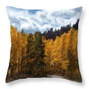 Autumn Splendor Throw Pillow by Carol Cavalaris