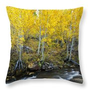 Autumn Stream Iv Throw Pillow