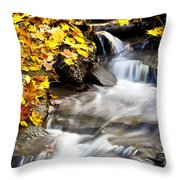Autumn Stream No 3 Throw Pillow