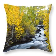 Autumn Stream V Throw Pillow