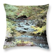 Autumn Streams Throw Pillow