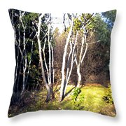 Autumn Sumacs Throw Pillow
